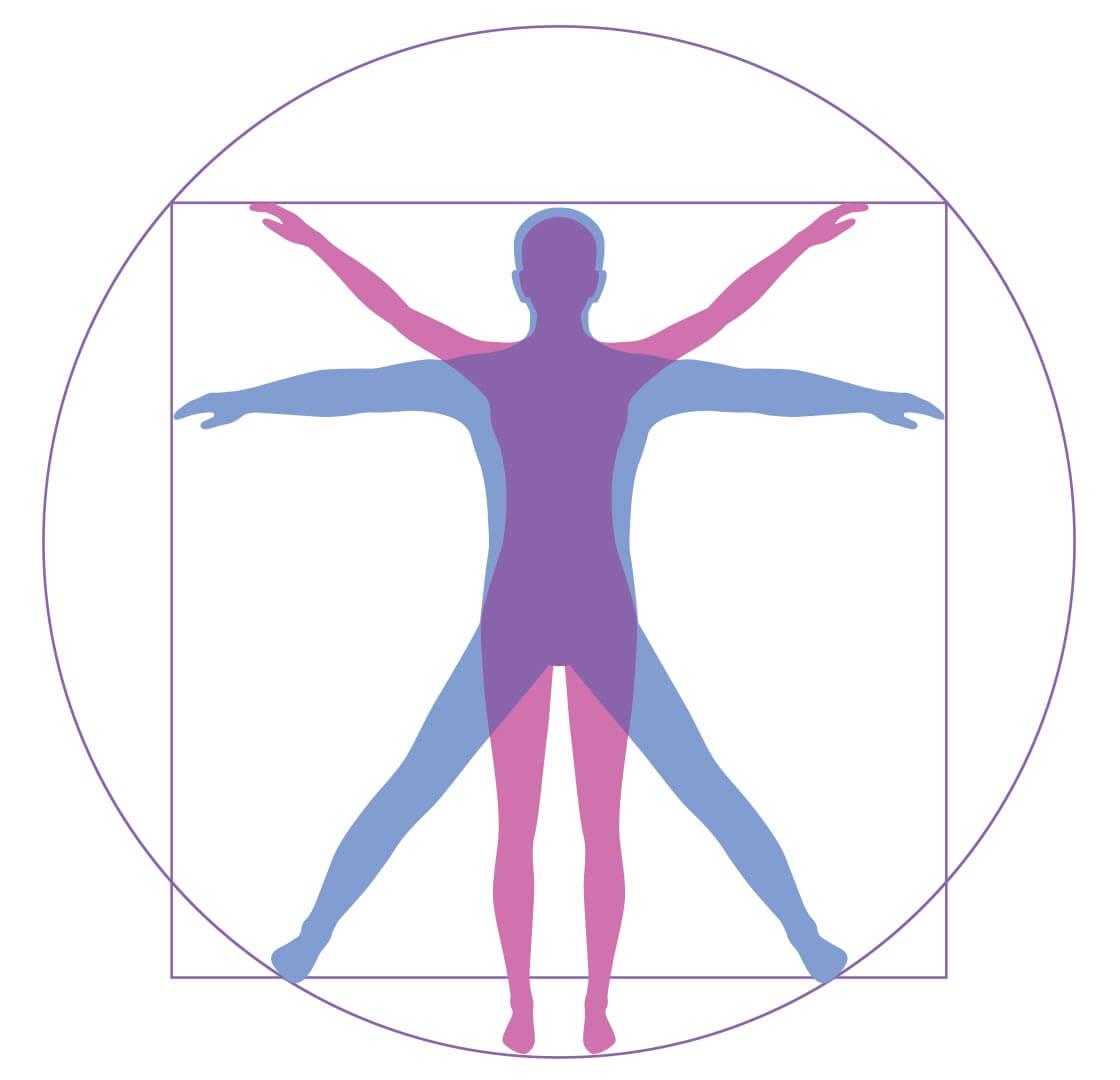 gal-bason-human-body